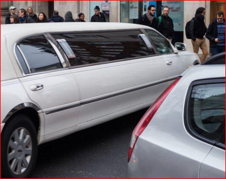 En vit limousin